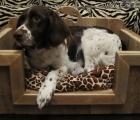 Hondenbak Lisa 6